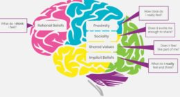 Displays the areas of the brain that outline the primary systems and their coordination to Project Management